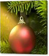 Red Ball In A Real Caucasian Fir Christmas Tree Canvas Print