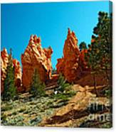 Red Canyon Trail Canvas Print
