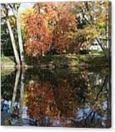 Red Cedar Reflections Canvas Print