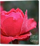 Red Crystal Petals Canvas Print