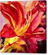 Red Day Lily Canvas Print