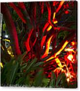 Red Entanglement Canvas Print