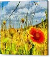 Red Flower In The Field Canvas Print