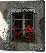 Red Geraniums In Window Canvas Print
