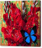 Red Gladiolus And Blue Butterfly Canvas Print