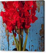 Red Glads Against Blue Wall Canvas Print