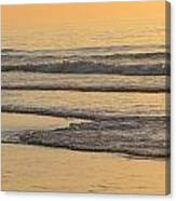 Red Heron At Sunrise Canvas Print