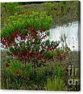 Red In Green Canvas Print