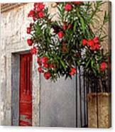 Red In Provence Canvas Print