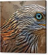 Red Kite - Featured In The Groups - Spectacular Artworks And Wildlife Canvas Print