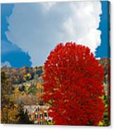 Red Maple White Cloud Canvas Print