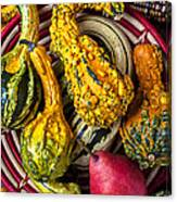 Red Pear And Gourds Canvas Print