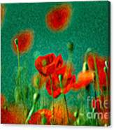 Red Poppy Flowers 07 Canvas Print