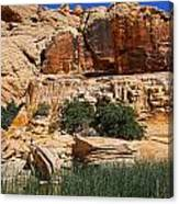 Red Rock Canyon The Tank Canvas Print