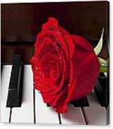 Red Rose On Piano Canvas Print