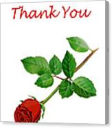 Red Rose Thank You Card Canvas Print