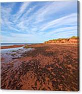 Red Sands Low Tide Canvas Print