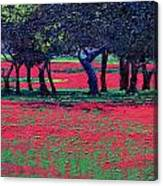 Red Shock Canvas Print