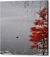 Red Tree On The Lake Front Canvas Print