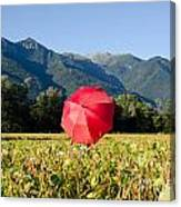 Red Umbrella On The Field Canvas Print