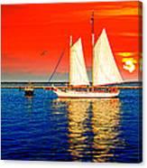 Red White Blue Cape Cod Will Do Canvas Print