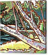 Redstone Swimmimg Hole Canvas Print