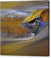 Reflected Autumn Color Canvas Print