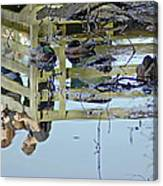 Reflected In A Memory Canvas Print