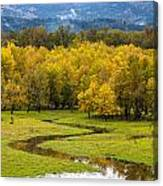 Reflected Seasons Canvas Print