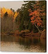 Reflecting On Autumn Canvas Print