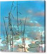 Reflection - Reeds And Pond Lilies Canvas Print