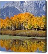 Reflection At Oxbow Bend Canvas Print