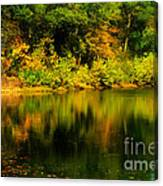 Reflection Of Autumn Colors Canvas Print