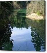 Reflection Pond Canvas Print
