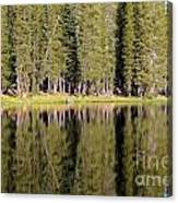 Reflections Along Summit Lake Canvas Print
