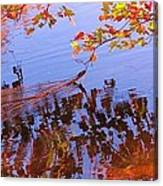Reflections And Currents Canvas Print