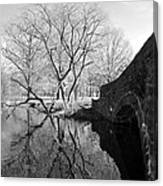 Reflections Of Natural Beauty Canvas Print