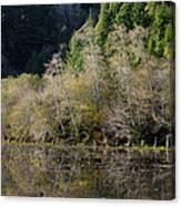 Reflections On Marshall Pond Canvas Print