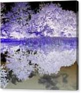 Reflective Abstracts Canvas Print