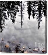 Reflective Wetlands Canvas Print