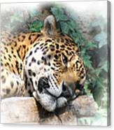 Relaxing 2 Canvas Print