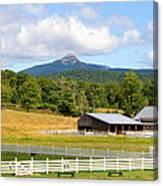 Remick Farm Summer Canvas Print
