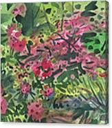 Rhododendrons And Azaleas Canvas Print