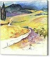 Ribera Del Duero In Spain 06 Canvas Print