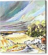 Ribera Del Duero In Spain 13 Canvas Print