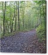 Richland Mine Trail Canvas Print