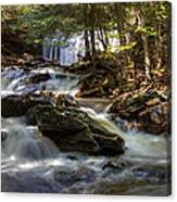 Ricketts Glen State Park Canvas Print