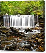 Ricketts Glen Waterfall Oneida Canvas Print