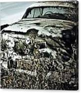 Ride Of Abandonment  Canvas Print