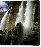 Rifle Falls I Canvas Print